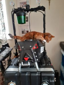 Roxy supervising The KATT